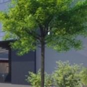 alo_pict-zelene-budovy_04d42